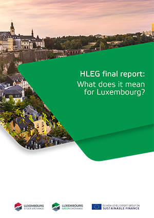 legislation-HLEG_report_meaning_for_luxembourg.png